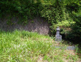 墓地廻りに草木が覆い茂っていましたので、伐採処分しました